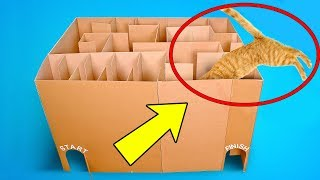 3 Superb Cardboard Crafts For Your Cat