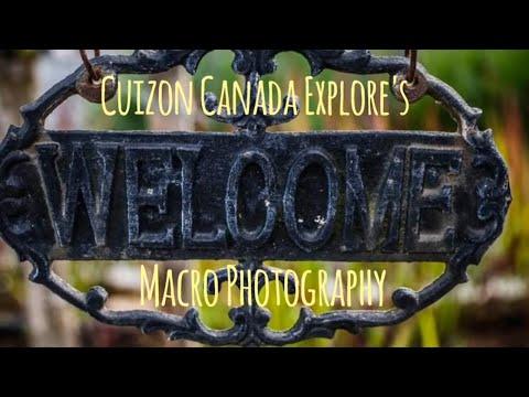 macro-photography-  -pentax-k3-  -pentax-lense-35mm-f2.8