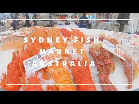 Tour Sydney Fish Market | Australia 🦘