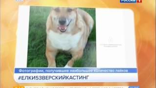 """Новый фильм """"Ёлки-5"""" !!!"""