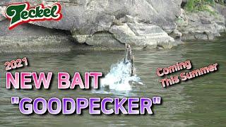 [Pro Angler TV] GOODPECKER/굿페커…