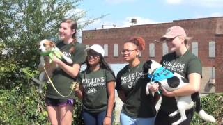 Hollins Day of Service 2016