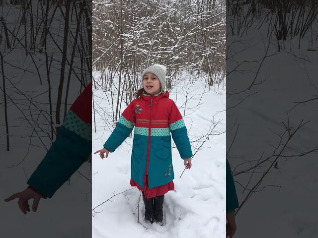 Изображение предпросмотра прочтения – ЕлизаветаАжигалиева читает произведение «Рождество» А.А.Блока