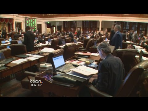 State of Texas: In Depth - The new state budget