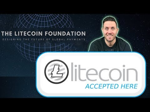Litecoin Foundation Update! & Looking At Important LTC Price Movement