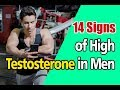 14 Signs of High Testosterone in Men