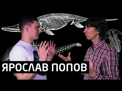 Ярослав Попов: любовь к палеонтологии / канал на YouTube / Дарвиновский музей [SciView]