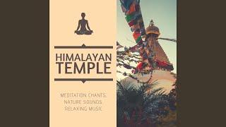 Meditative State of Mind