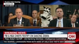 FBI & NSA CHIEFS TESTIFY ON DANCING ZEBRA #JustAddZebras