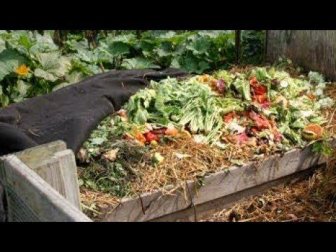 Tipos de compostaje yahoo dating