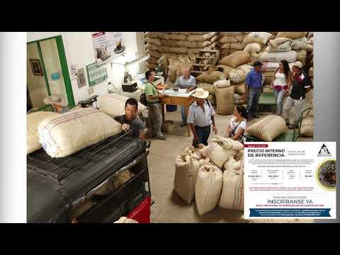 Llegó la bonanza cafetera para los cultivadores del grano