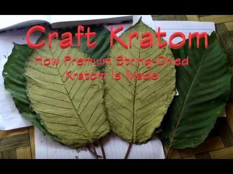 How Kratom Is Made - Texas Family Harvest