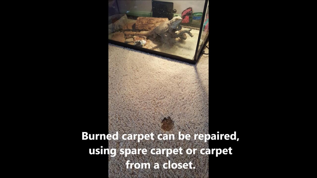 Carpet Burn Repair Ashburn Va Youtube