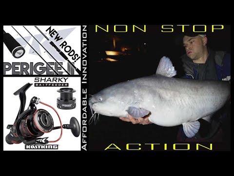 NON Stop Catfish Action on Light Tackle KastKing Catfish Setup | Washington DC Tidal Basin Catfish