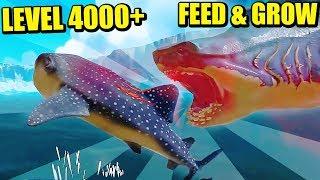 RECORD DE LEVEL +4000 - FEED & GROW FISH | Gameplay Español Mp3