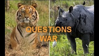TOP 10 QUESTIONS ON WILDLIFE