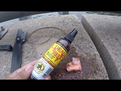 Sometimes You Gotta ENERGIZE YOUR BAIT!!! MTB Catfish Slam, May 2017 (Philadelphia, PA)