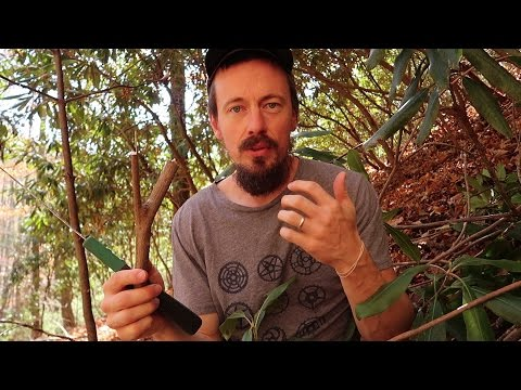 Using Rhododendron To Make Wooden Hooks!