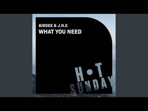 What You Need (Extended Mix)