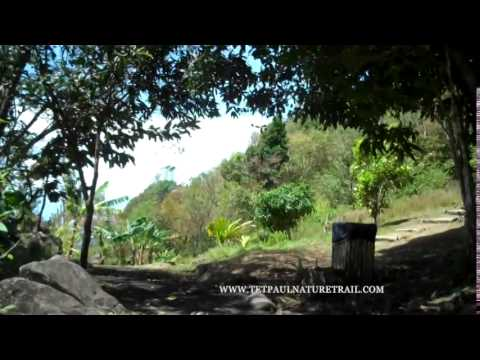TET PAUL NATURE TRAIL FULL VIDEO