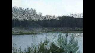 Голубые Озёра(, 2013-01-12T17:36:04.000Z)
