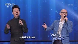Ping An《Edelweiss》ft. Ren Luyu /平安&任鲁豫《绒花》/Anson Ping 20150408 (5/6)