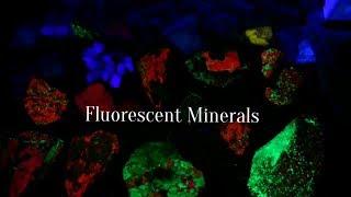 Attic Stuff and Fluorescent Minerals!