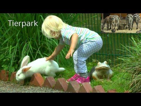 Tierpark Bad Pyrmont erleben