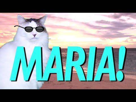 HAPPY BIRTHDAY MARIA! - EPIC CAT Happy Birthday Song
