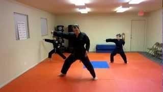 Won-Hyo Tae Kwon Do Form Explained Step by Step