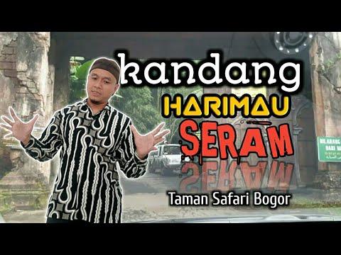 Lokawisata Baturraden, Wisata Alam Lengkap di Purwokerto | #Purwokerto from YouTube · Duration:  10 minutes 44 seconds