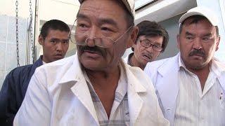 Мастер кастрации - РЕАЛЬНОСТЬ.Казахстан