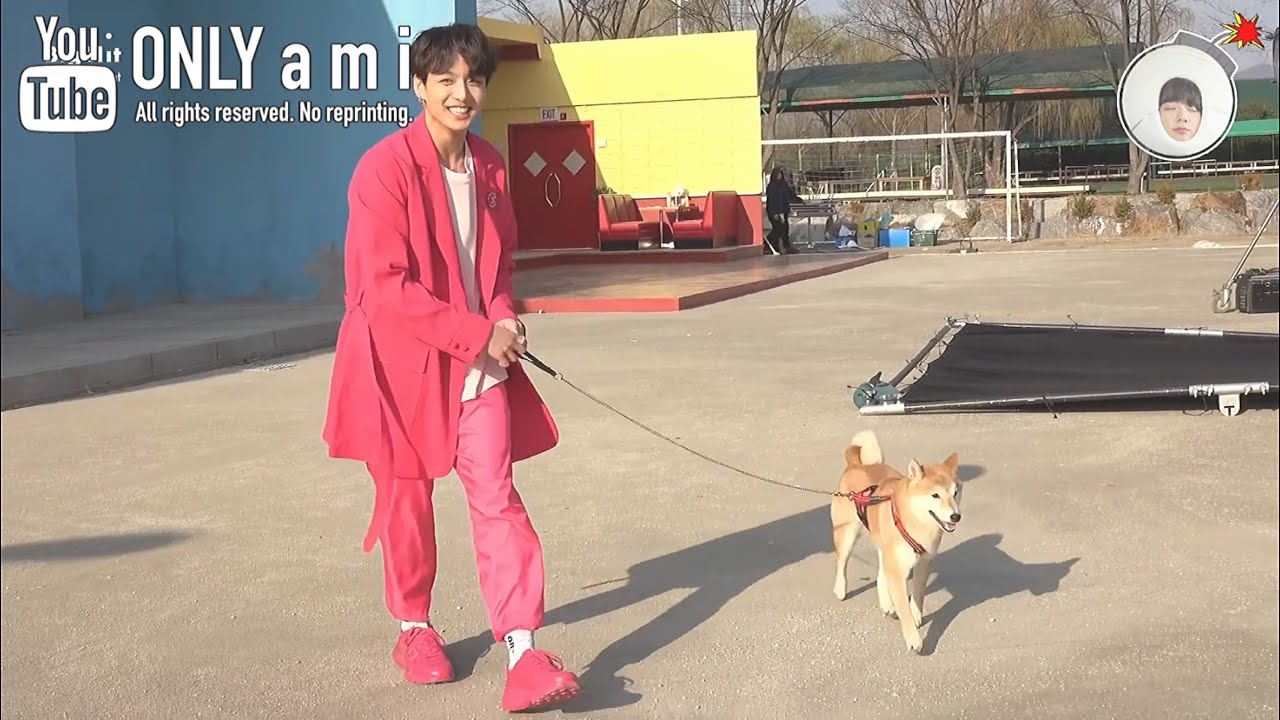 【BTS日本語字幕】犬とバンタン、いいな。【[BANGTAN BOMB] There's a Dog on the Set with BTS!】