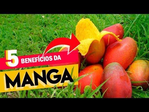 hqdefault Mangas – Quais são os benefícios, as propriedades, o conteúdo de calorias e a tabela de alimentação