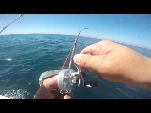 Ejido Eréndira First Fishing Trip