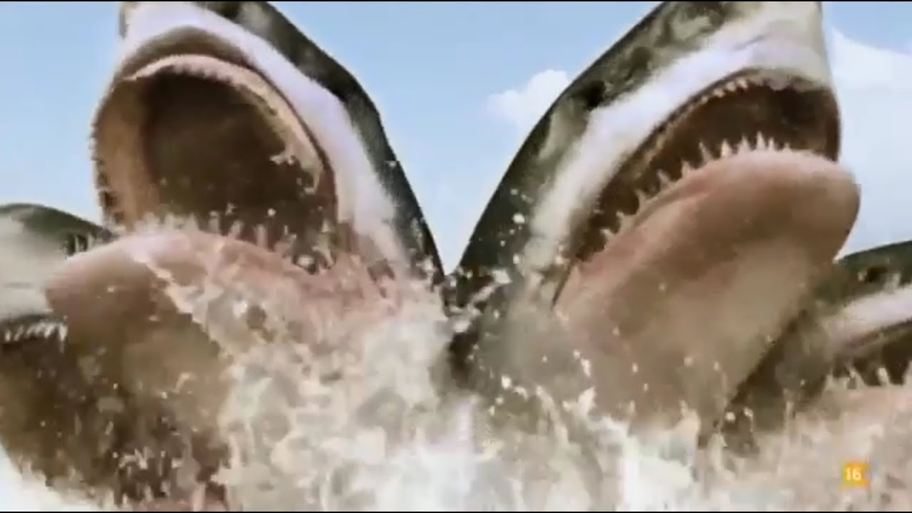 Download All Creature Effects #8: 5-Headed Shark Attack
