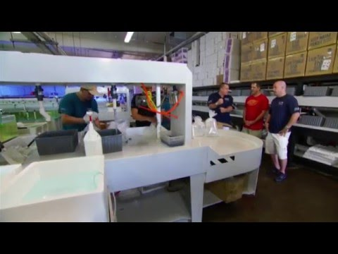 Exotic Reef Imports Featured On Animal Planet's TANKED