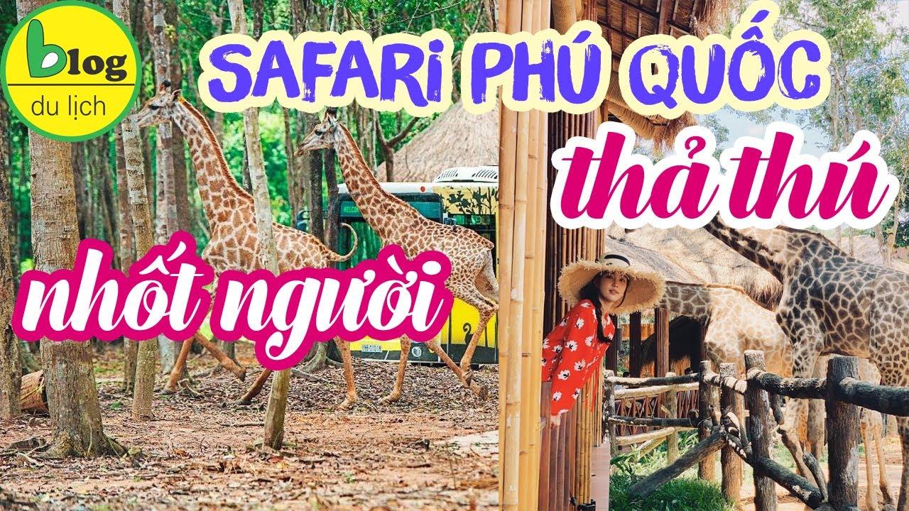 SAFARI PHÚ QUỐC review những hoạt động hấp dẫn nhất năm 2019 tại safari phú quốc