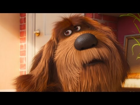 The Secret Life of Pets - Damage Control | official FIRST LOOK clip (2016)