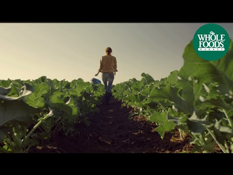 Midwest Whole Foods Market Commercial: Food From A Happy Place | Store Opening | Whole Foods Market