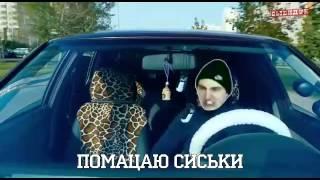 Тимати баклажан (прикол)