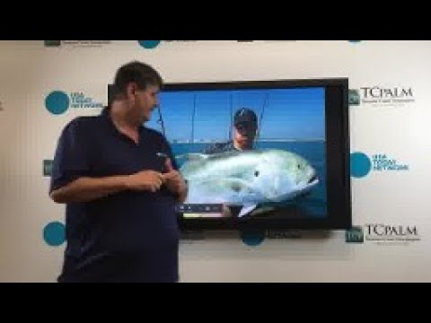 Video: Ed Killer's Weekly Fishing Forecast, Offshore, June 15, 2017
