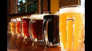 Лечение пивом   уникальный санаторий на Тернопольщине