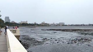 Irma sucks water out of Sarasota Bay