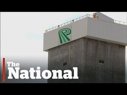 PotashCorp Shuts Down New Brunswick Mine, Cuts 430 Jobs