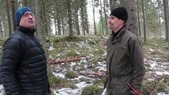 Puunmyyntisuunnitelma - näin metsänhoitoyhdistys auttaa