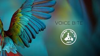 JOTT - Voice Bites