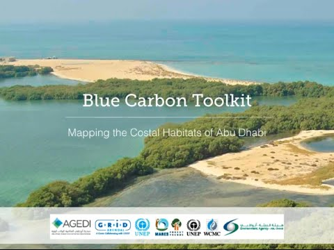 The Blue Carbon Mapping Toolkit