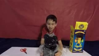 World's Largest Gummy Bear - Taste Test