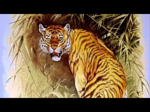 The Tiger- Poem by William Blake